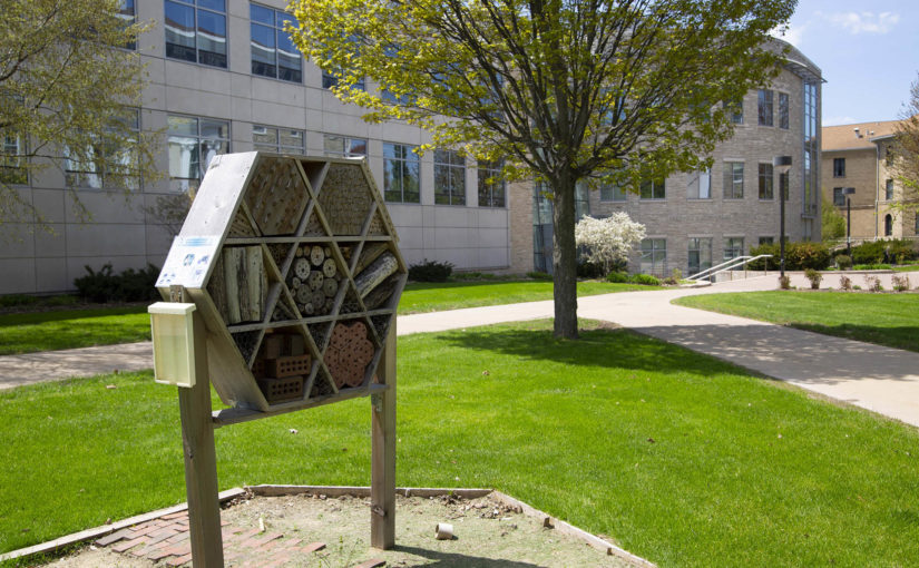 The hexagon-shaped pollination box is on the Main Hall green, near Youngchild Hall.