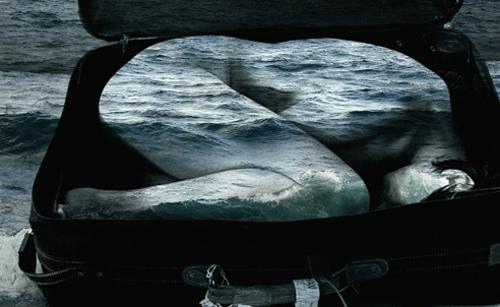 "The photographic image ""El Viaje"""