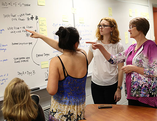 Biology professor Beth De Stasio in classroom with students