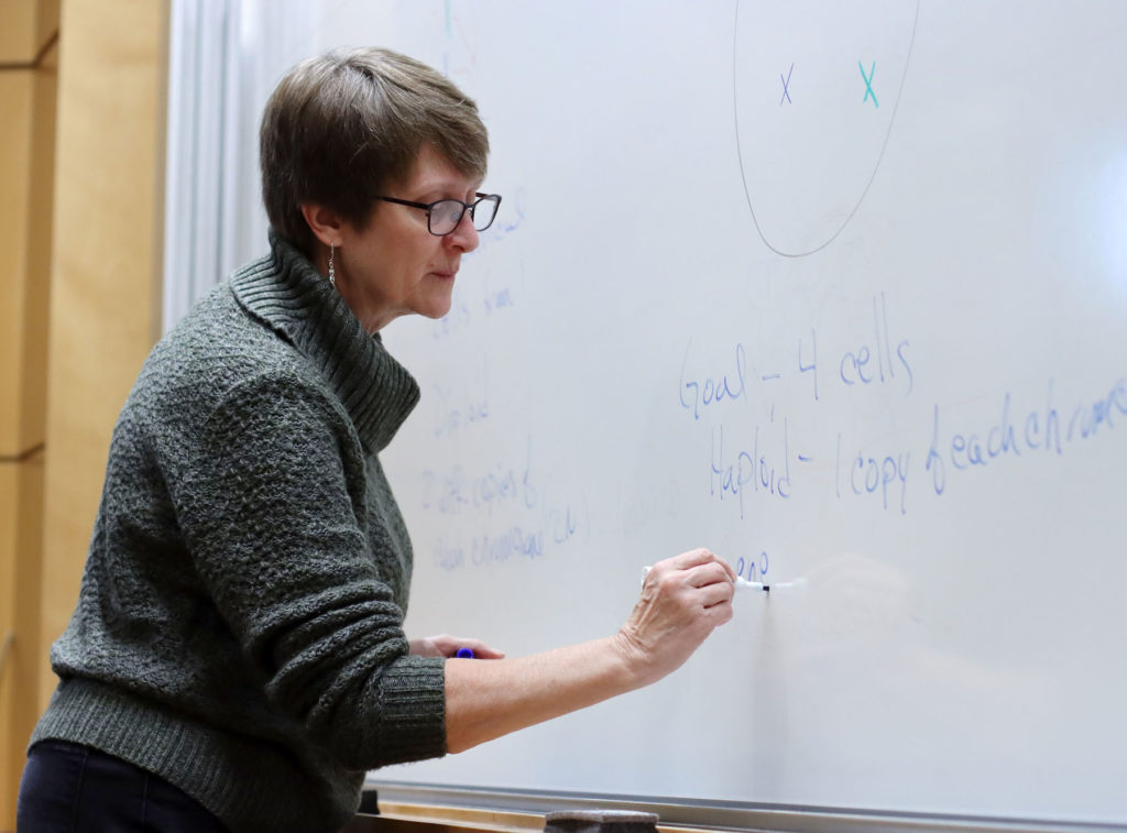 Elizabeth Ann De Stasio writes on a whiteboard as she teaches Integrative Biology: Cells to Organisms at Lawrence.