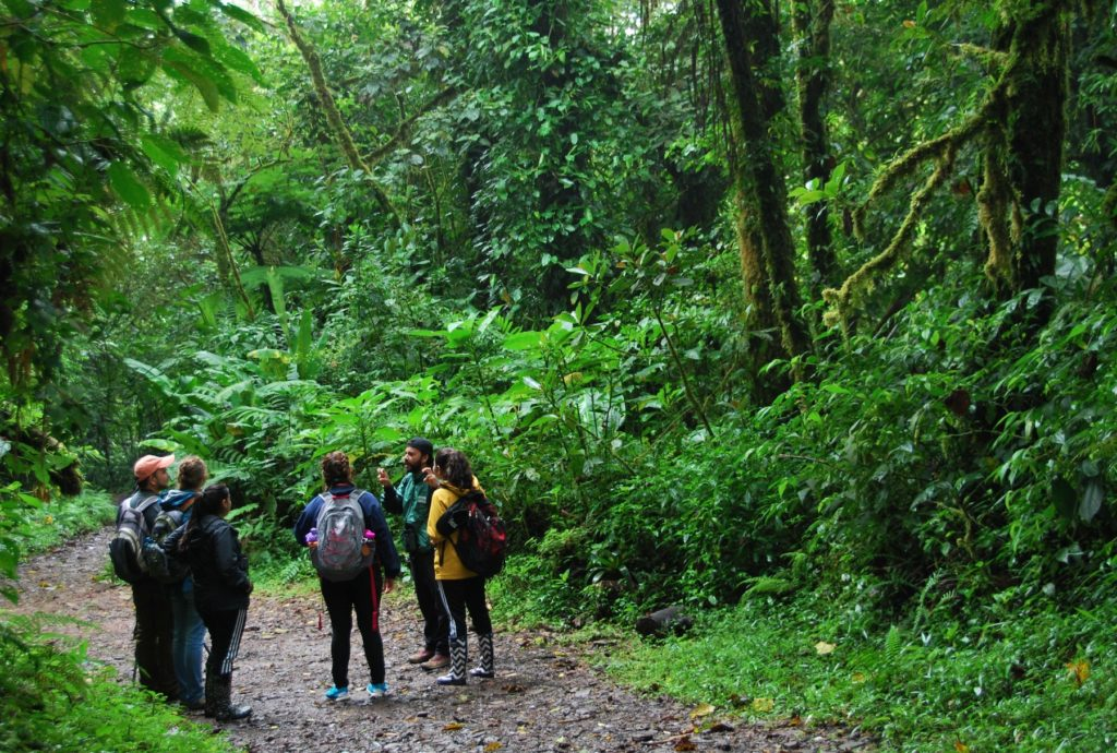 Lawrence students take part in a global classroom in Costa Rica.